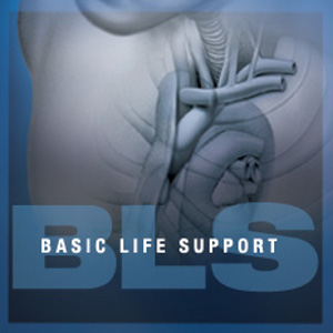 Pelatihan Basic Trauma Life Support And Basic Cardiac Life Support